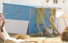 دوره آموزشی مدیریت بحران اسکان اضطراری وموقت در زلزله های روستایی و شهری